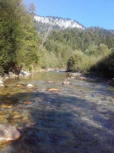 Dieser Gewässerabschnitt der Mürz ist ein Salmoniedenrevier der absoluten Oberklasse und von wildromantischer Landschaft geprägt.