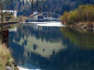 Im Oberlauf der Mürz gibt es bei Neuberg ein 10km langes sehr attraktives Fliegenfischrevier. Bach- und Regenbogenforellen können mit Spinnrute und Kunstköder (Einfachschonhaken) gefischt werden.